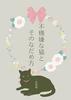 【BL】不機嫌な猫とそのなだめ方