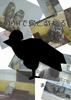 【エッセイ・随筆】【手製本】掛川で鳥と戯れる【新刊】