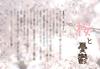 【300SSラリー】桜と憂鬱