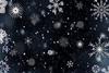【300SSラリー】雪降る海