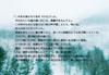 【300SSラリー】白魔の誘い
