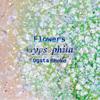 【百合】フラワーズ1 Gypsophila