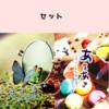 【恋愛】あまあま&花の色はセット
