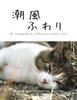 【エッセイ・随筆】潮風ふわり vol.5田代島網地島