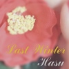 【詩歌】 Last Winter
