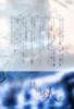 【300SSラリー】其の國の公人1—フミ篇—/市瀬まち