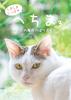 【ノンフィクション】【その他】へちま3 〜 大人の階段のぼりおり 〜(猫写真集)