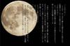 【300SSラリー】お月見どろぼう