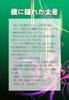 【300SSラリー】鏡に隠れた本音