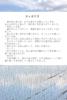 【300SSラリー】田んぼの空