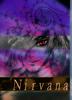 【2次創作】【Hellsing】【デルアー】Nirvana【R18】