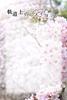 【300SSラリー】軌道上のソメイヨシノ